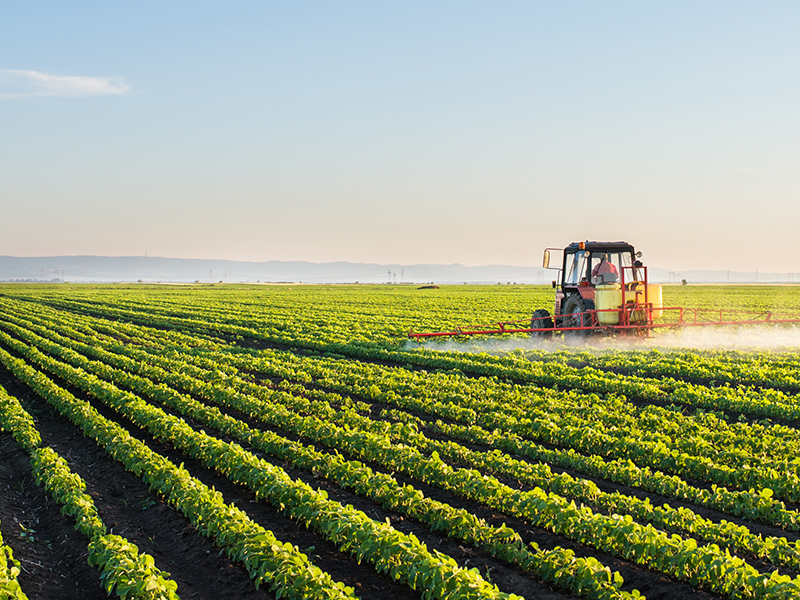 Attorney Agriculture Law